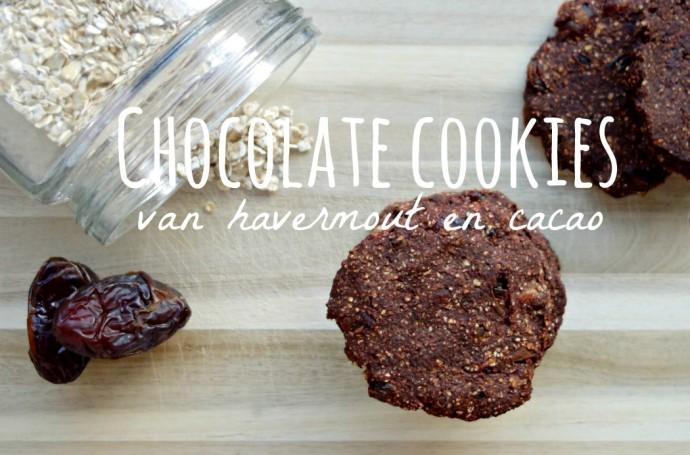 People like you and me, healthyfoodlove choco koekjes