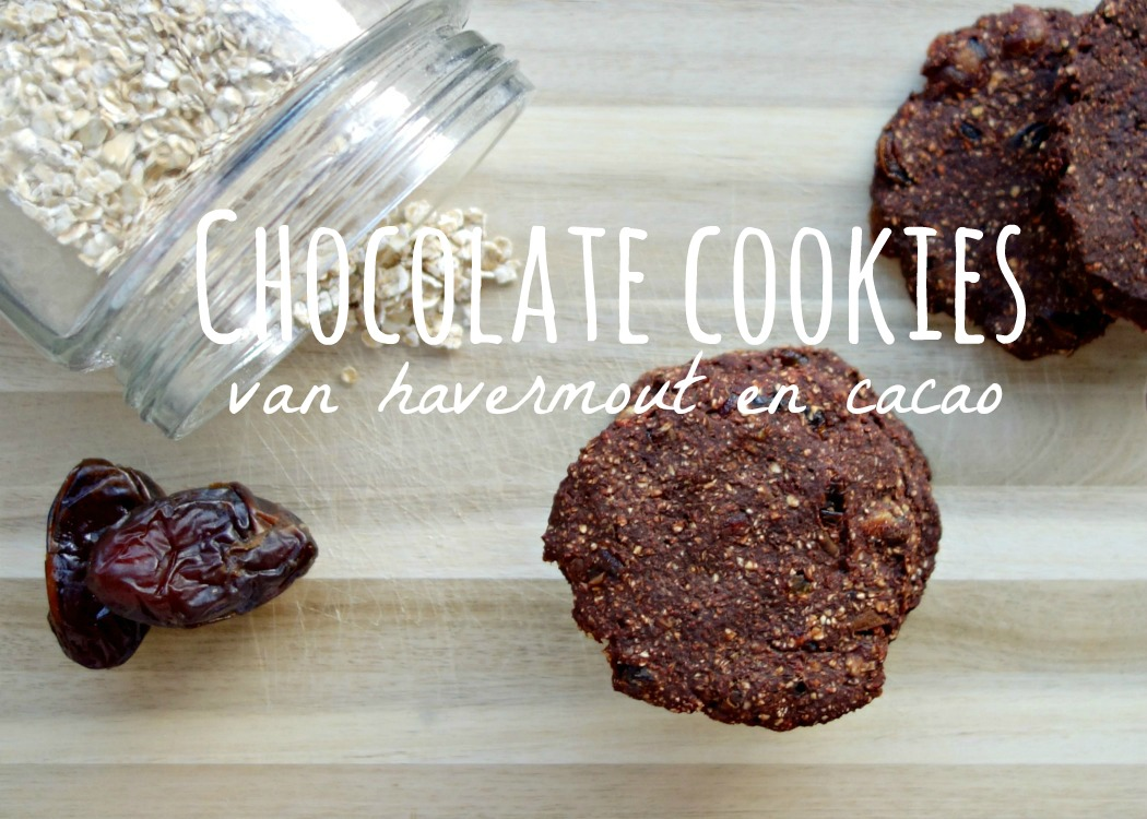 People like you and me, healthyfoodlove choco koekjes